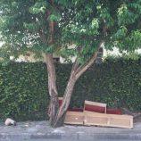 Lixo e sujeira se multiplicam em vários bairros da cidade