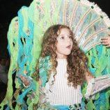 Confira a galeria de fotos das festividades do Carnaval em Mogi Mirim