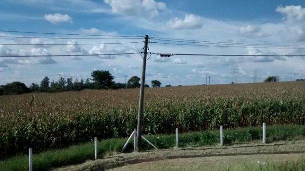 Cabos telefônicos instalados na zona rural foram furtados quatro vezes nos últimos 20 dias. (Foto: Tatyana Montera Polettini)