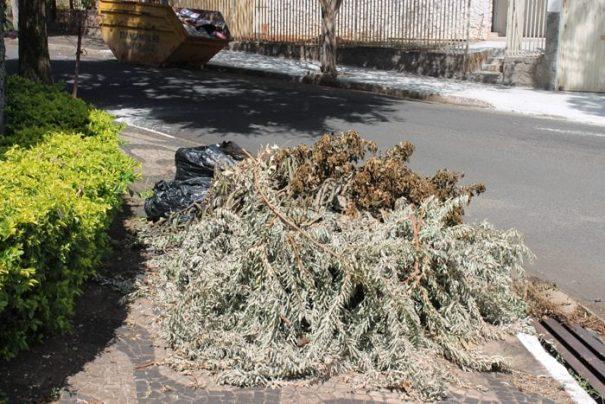 Munícipes não poderão atear fogo em restos de galhos e folhas (Foto: Arquivo)
