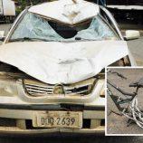 Motorista que deixou o local após acidente se apresenta à polícia