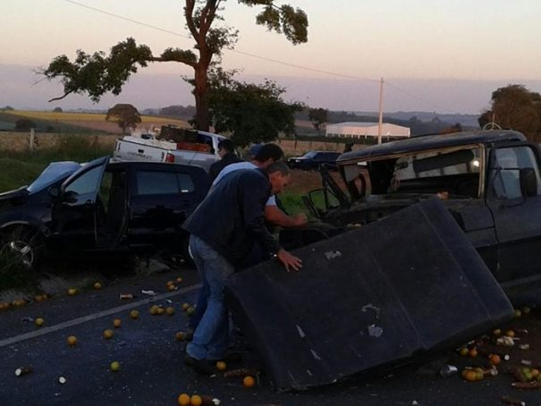 Segundo a polícia, Fox estava acima da velocidade da via; garrafas de bebidas foram apreendidas (Foto: Divulgação)