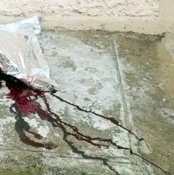 Disparos atingiram a cabeça e nuca da vítima (Fotos: Divulgação)
