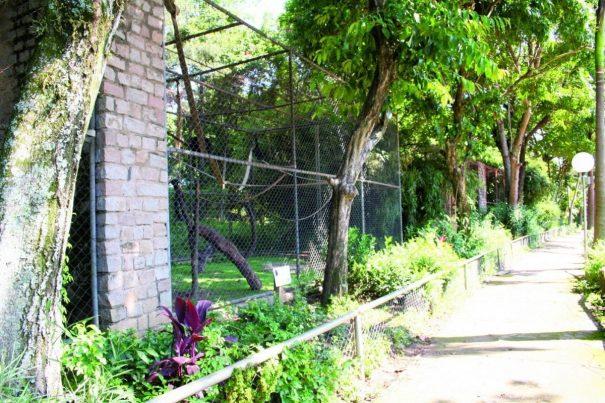 Terreno do Zoológico Municipal, no Aterrado, corresponde a cerca de 5% da área total do Horto (Foto: Arquivo)