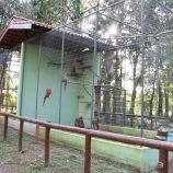 Com equipe defasada, Zoológico Municipal está fechado para visitação