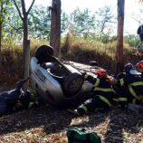 Motorista de 26 anos morre após chocar carro em árvore e capotar
