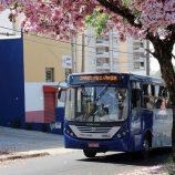 Começa o recadastramento de passageiros do transporte coletivo de Mogi Mirim