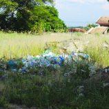 Mogi Mirim em apuros: Sujo, Estádio Vail Chaves registra sinais de abandono
