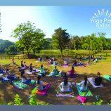 Yoga para Todos ocorre neste domingo, no zoológico