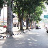 Árvores poderão ser retiradas das praças São José e Floriano Peixoto