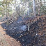 Incêndio é registrado em área verde na Vila Pichatelli, ao lado do Horto Florestal