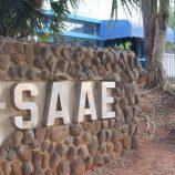 Saae realiza caça às baratas a partir de segunda-feira em todos os bairros da cidade
