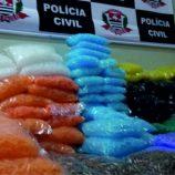 Polícia Civil apreende 229 mil tubetes vazios em casa no Jardim do Lago