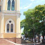 Prefeitura vai erradicar  8 sibipirunas condenadas ao lado da igreja matriz