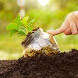 Visafran esclarece sobre seguro para agricultores; governo liberará R$ 1 bi