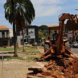 Começa revitalização da Praça São José com plantio de 8 ypês amarelos