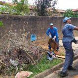 Mutirão contra a dengue visita 68% dos imóveis na Zona Norte da cidade