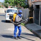 Zona Sul, com 112 casos de dengue, vai receber nebulização a partir de 2ª