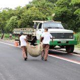 SSM faz limpeza no Zerão e recolhe galhos e entulhos na Zona Oeste de Mogi Mirim
