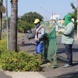 Limpeza de vias públicas é executada e coleta de galhos entra em nova fase