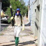 Plano de combate à dengue incluiu diversas ações e coleta de lixo e entulhos