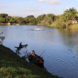 Bombeiros executam a retirada das alfaces-d'água do lago principal do Zerão