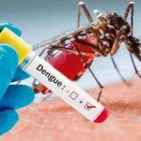 Município registra apenas 4 casos de dengue em uma semana e queda continua