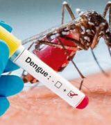 Em uma semana, Vigilância em Saúde confirmou apenas 4 novos casos de dengue