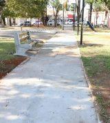 SSM realiza manutenção e corte de árvores na Praça Francisco Alves, no Centro