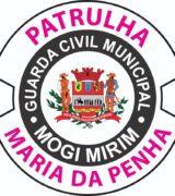 Patrulha Maria da Penha apresenta dados ao Conselho dos Direito das Mulheres
