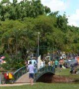 Artur Nogueira realiza plantio de mudas de árvores para memorial da Covid-19