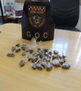 GOC apreende drogas em duas regiões da cidade