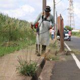 Equipes da SSM atuam em diversas frentes de trabalho na limpeza pública em Mogi