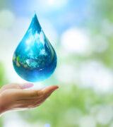 ESPECIAL: Água, fundamental para a nossa sobrevivência