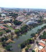 Secretaria de Meio Ambiente de Mogi Mirim prepara Plano de Arborização Urbana