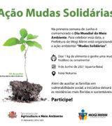 Feira Noturna terá doação de plantas na ação 'Mudas Solidárias' dia 9 de junho
