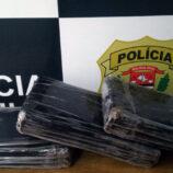 Ação do SIG de Mogi Mirim causa prejuízo de R$ 100 mil ao crime
